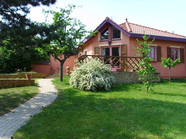 Très jolie Villa proche de Lyon - Fleurieux-sur-l'Arbresle - Casa de camp