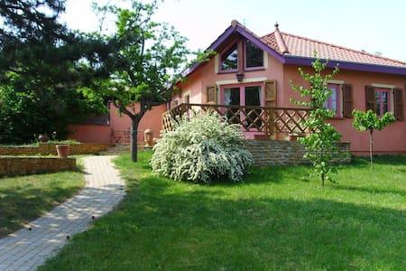 Très jolie Villa proche de Lyon - Fleurieux-sur-l'Arbresle