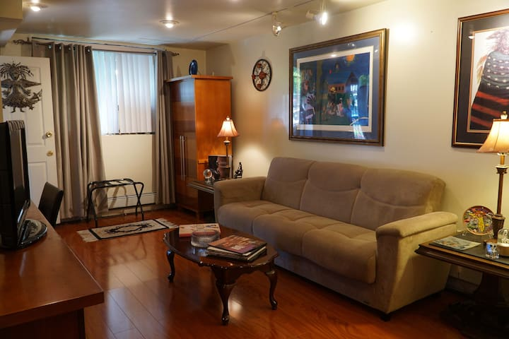 Entrance into the living room with convertible sofa bed, T.V., and air conditioner;-)