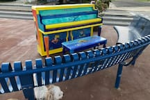 Piano downtown free the play !
