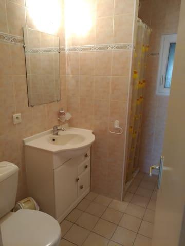 salle de bain accolée à la chambre.