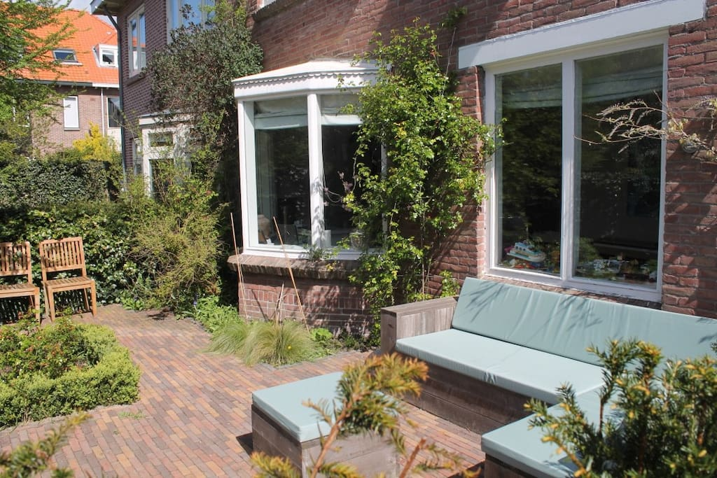 Sunny garden in front of house
