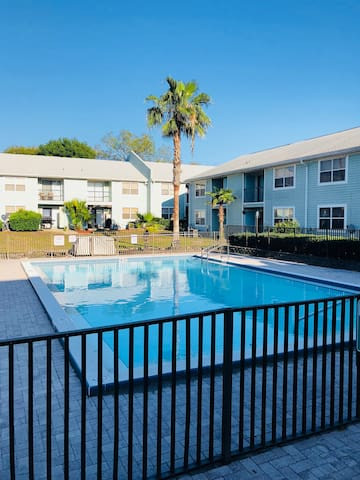 Apartment in the USF, Busch Gardens & Moffitt Area