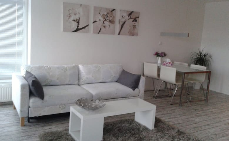 Apartment Husova s terasou - Poděbrady - Appartement