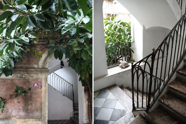 Beautiful centric apartment Catania