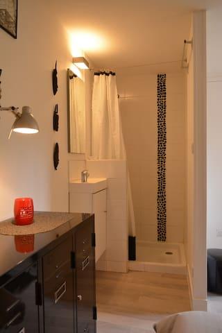 Douche et lavabo dans la chambre