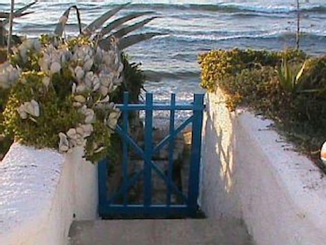 Villa con giardino sul mare