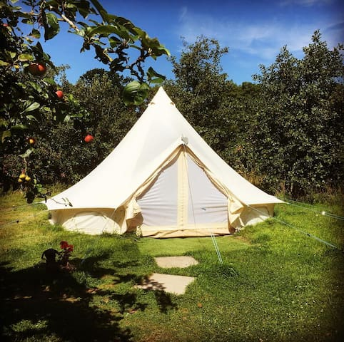The Apple Farm - traditional bell tent 1.