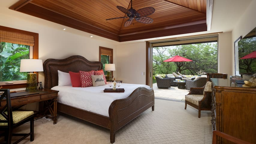 Master bedroom with King bed - private entrance to backyard