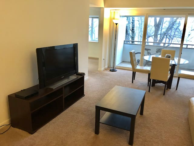 Beautiful Apartment near Town Center-not basement!