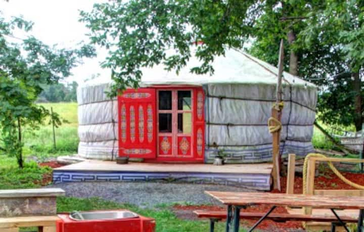 Connect to the Land in the Yurt at Topsy Farms