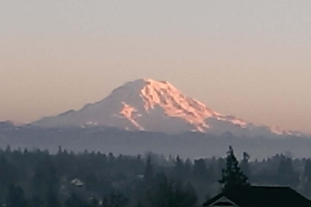 Majestic Mount Rainer