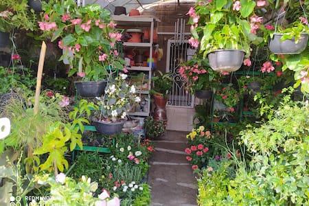 Agradable departamento en  Zapopan