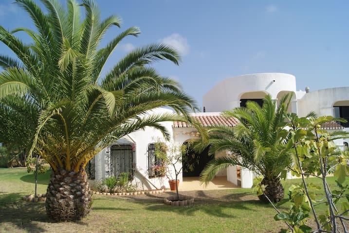 "Holiday house ""Castelo Palmeira"""