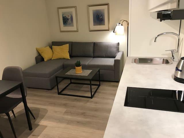 Varm og koselig leilighet nære sentrum