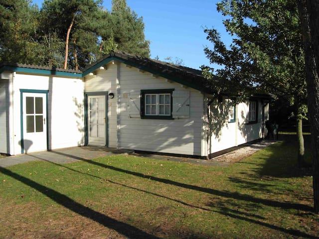 Gezellig Scandinavisch chalet op kleinschalig park - Oostrum - Chalet
