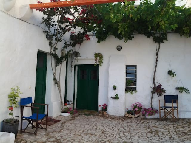 "AGROTURISMO "" BARRANCO"" - Ferreries - Bed & Breakfast"