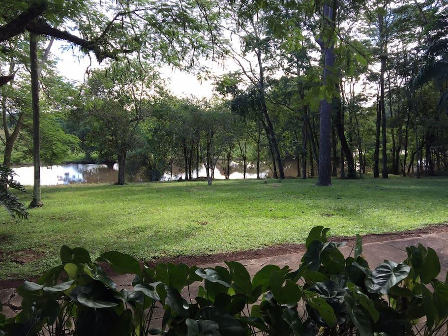 Jardim com lago ao fundo