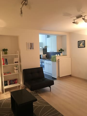 Elegant, quiet one bedroom flat at Botanic Garden - Leuven - Leilighet
