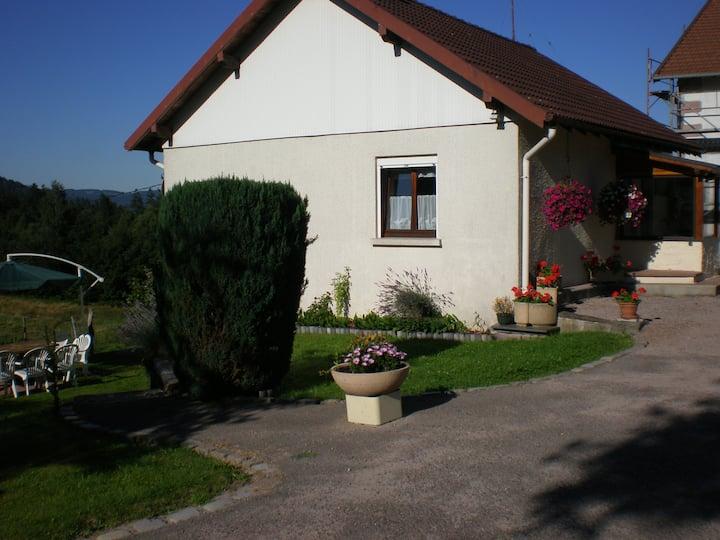 Maison en plein coeur des Hautes Vosges SYNDICAT