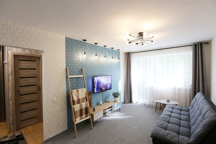 Delightful Apartment in Kaunas
