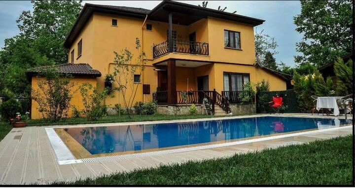 Palmiye house