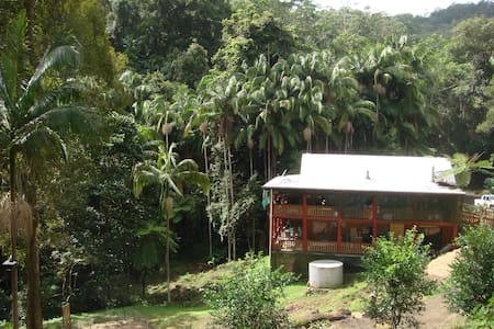 Eco Rainforest Permaculture Offgrid - Harper Creek - Andere