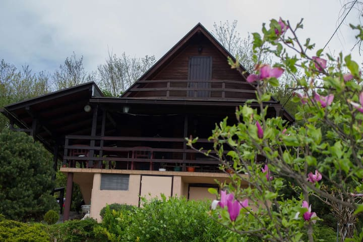 Holiday House Biba - Tušilović - บ้าน