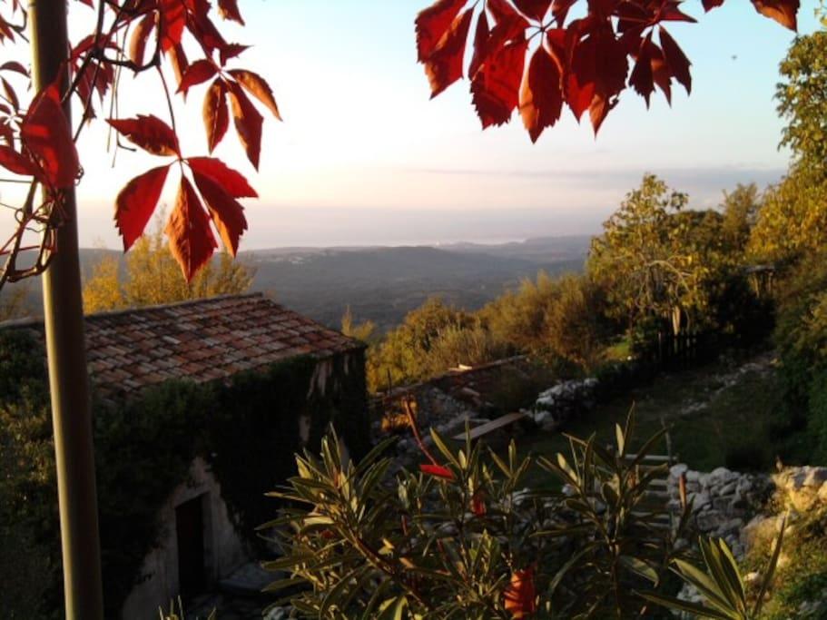Vue du maquis depuis la terrasse