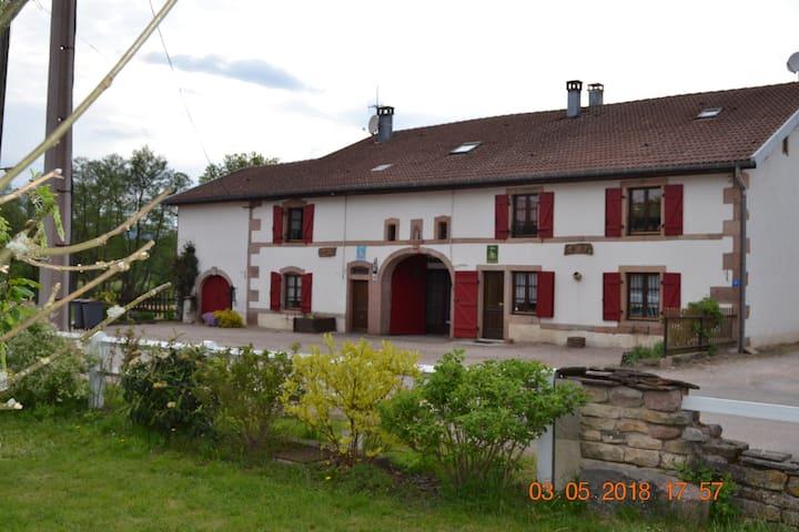 Gite PERCE NEIGE - 7 personnes -  Vosges