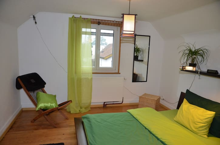 Cosy room only 25 minutes from the fair (1419) - Münchenstein - Casa