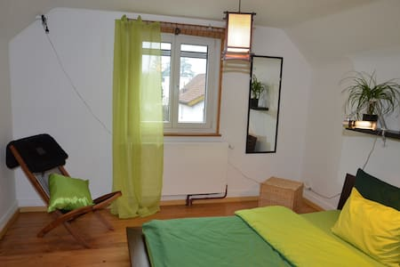 Cosy room only 25 minutes from the fair (1419) - Münchenstein - 独立屋