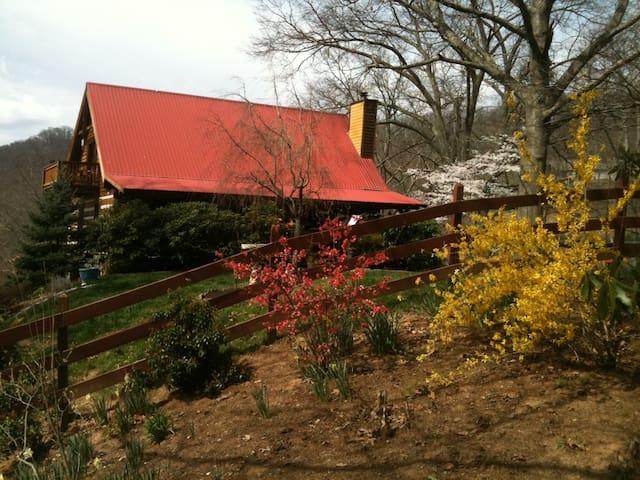 Rustic Cabin Near Asheville, NC - Canton