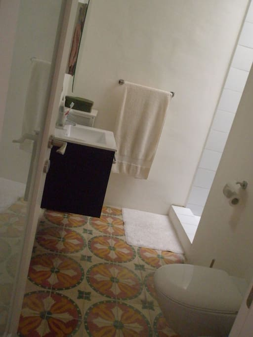 Guest's bathroom - includes shower, sink, toilet and bidet.