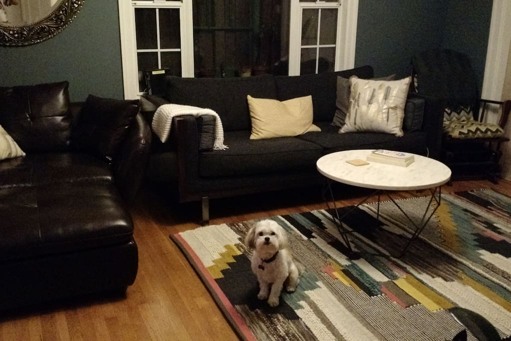 Dog not included. Living room sits 6 comfortably