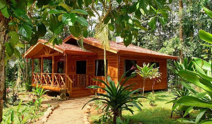 Cabinas Costa Tropicana: Cabina Toucan