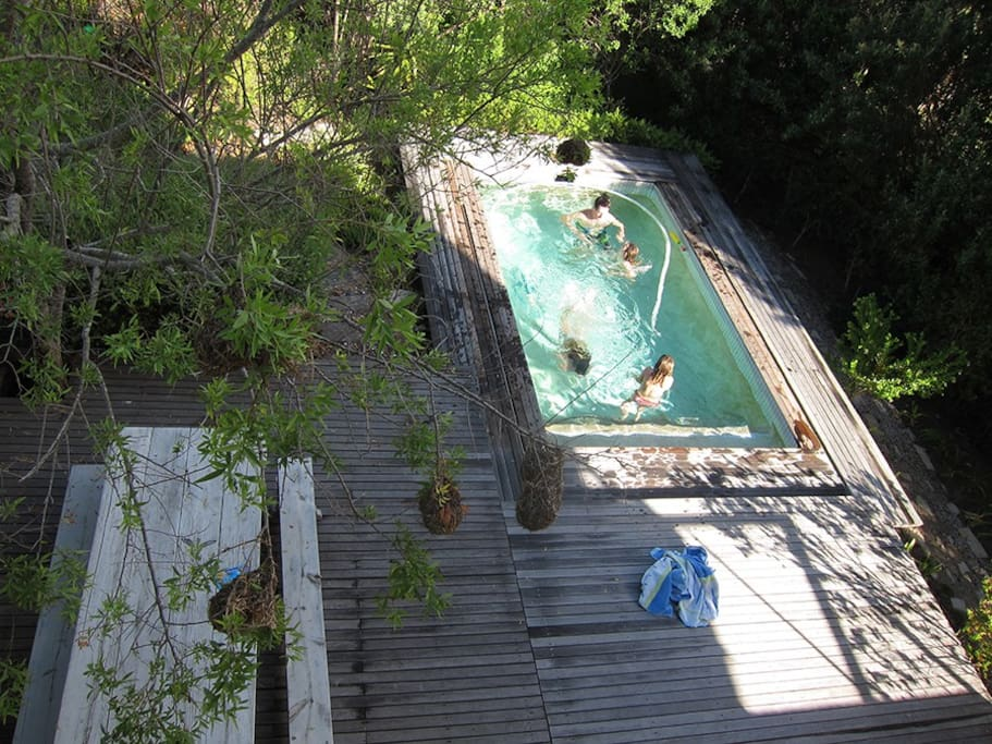 View of the pool from landing.