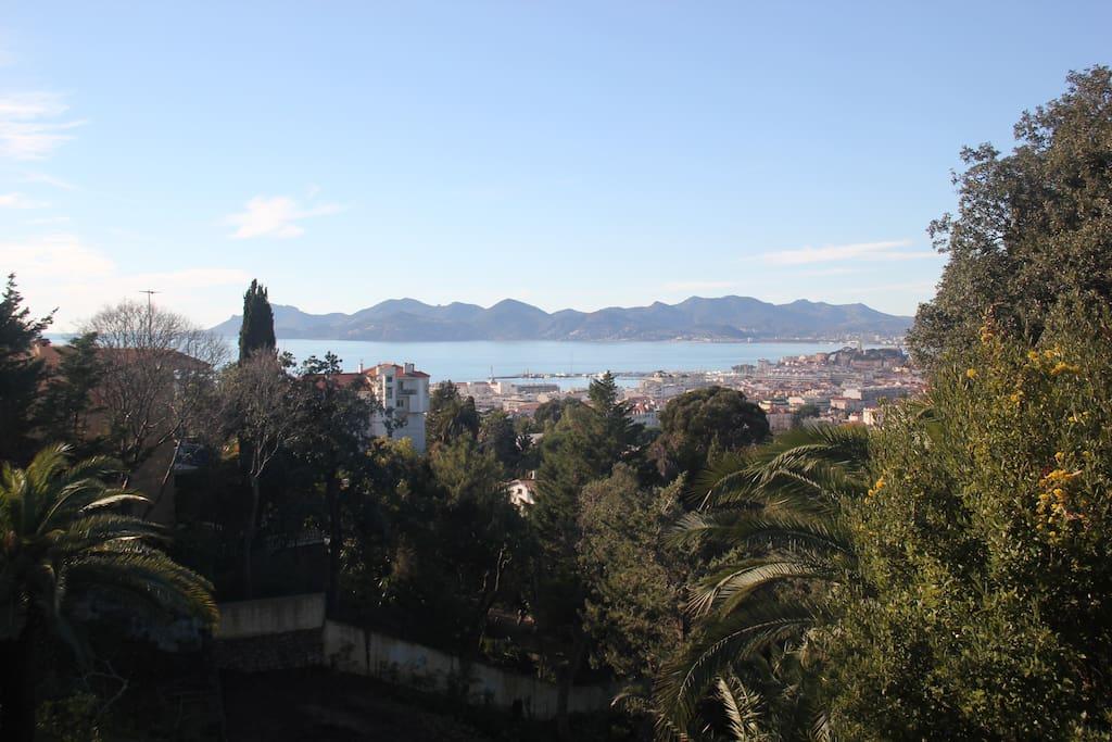 Gardens, Cannes, sea