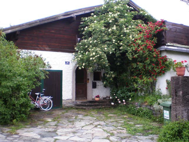 5BR house w. big garden & fireplace - Zell am See - Maison