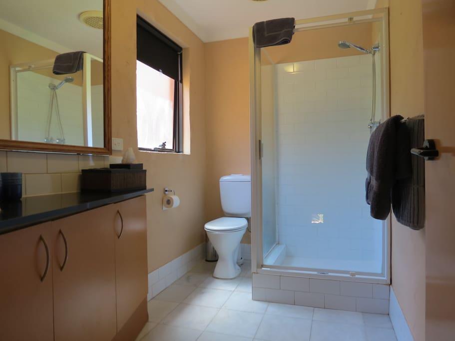 Bathroom is upstairs off the bedroom