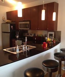 Walk to Downtown & Convention Hall - Austin - Apartment
