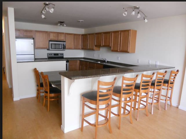 Spring/Summer Apartment in Downtown Ann Arbor! - Ann Arbor - Apartament