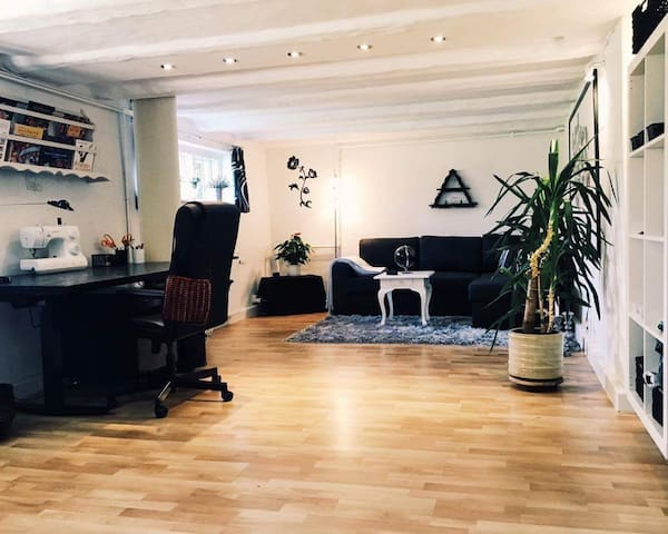 Spacious basement/private entrance - Kopenhagen - Huis