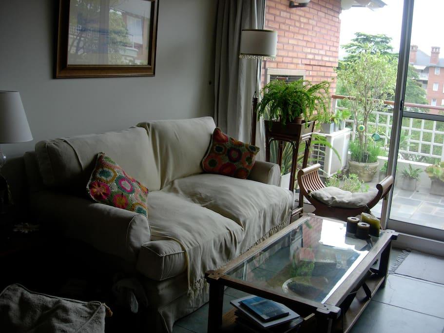 Luminoso living con T.V y vistas al jardín