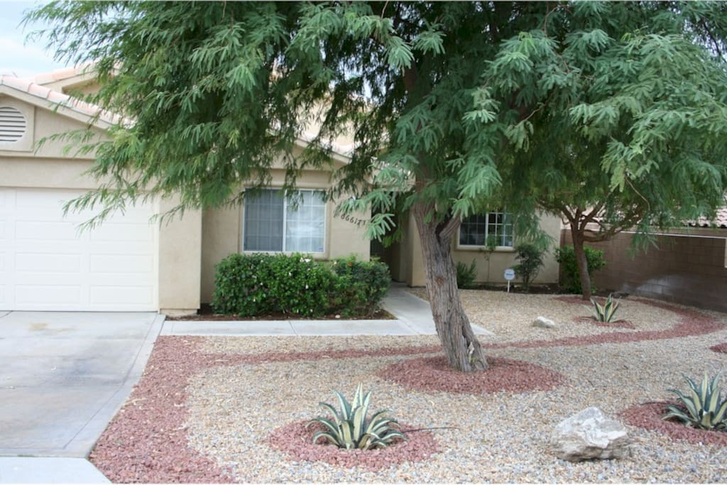 professionally landscaped front of home w various types of cactuses, and rocks