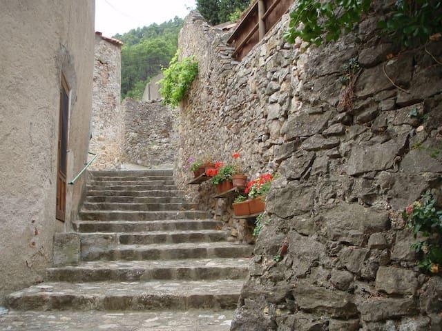 Cottage de la Montee Saint Roch - Padern - Hus