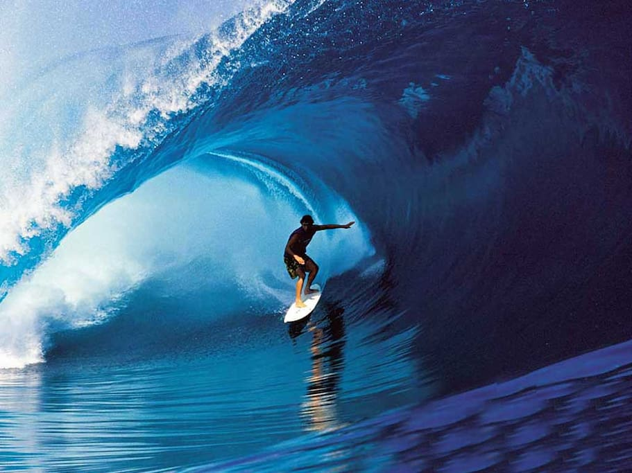 You are invited to Catch the Big Wave.