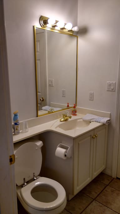 Private bathroom with shower stall.