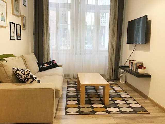 Renewed flat in a historical centre