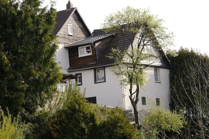 Waldeck Haus Blick am Edersee